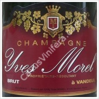 champagne yves morel
