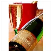 Domaine Seilly Pinot Gris Alsace Schenkenberg Cuvee Particuliere